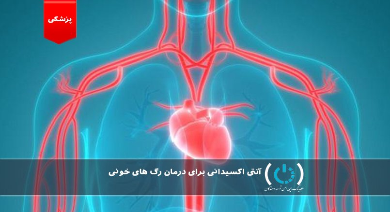آنتی اکسیدانی برای درمان رگ های خونی