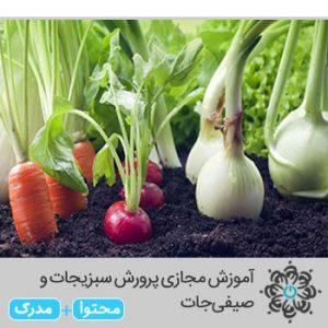 پرورش سبزیجات و صیفی جات