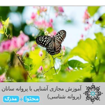 آشنایی با پروانه سانان (پروانه شناسی