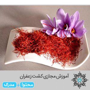 موزش مجازی کشت زعفران