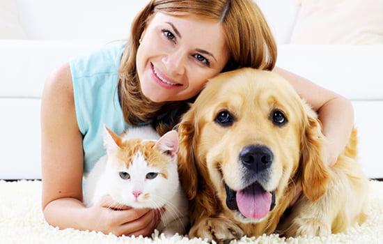 مراقبت از حیوانات