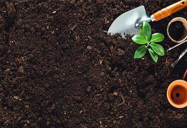 آماده سازی خاک