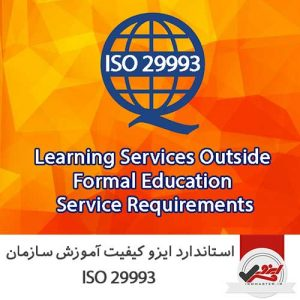 ISO-29993